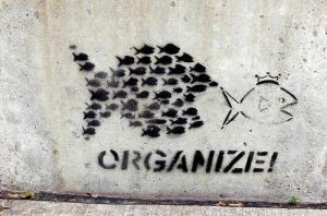organize11413285324
